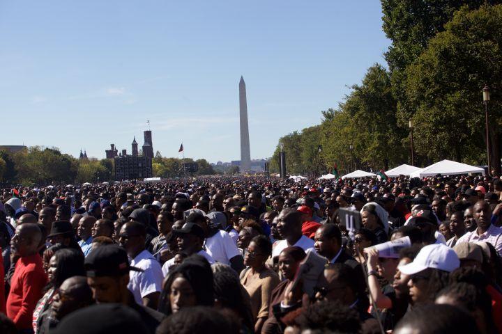 Million Man March Washington 2015
