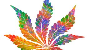 Cannabis leaf design