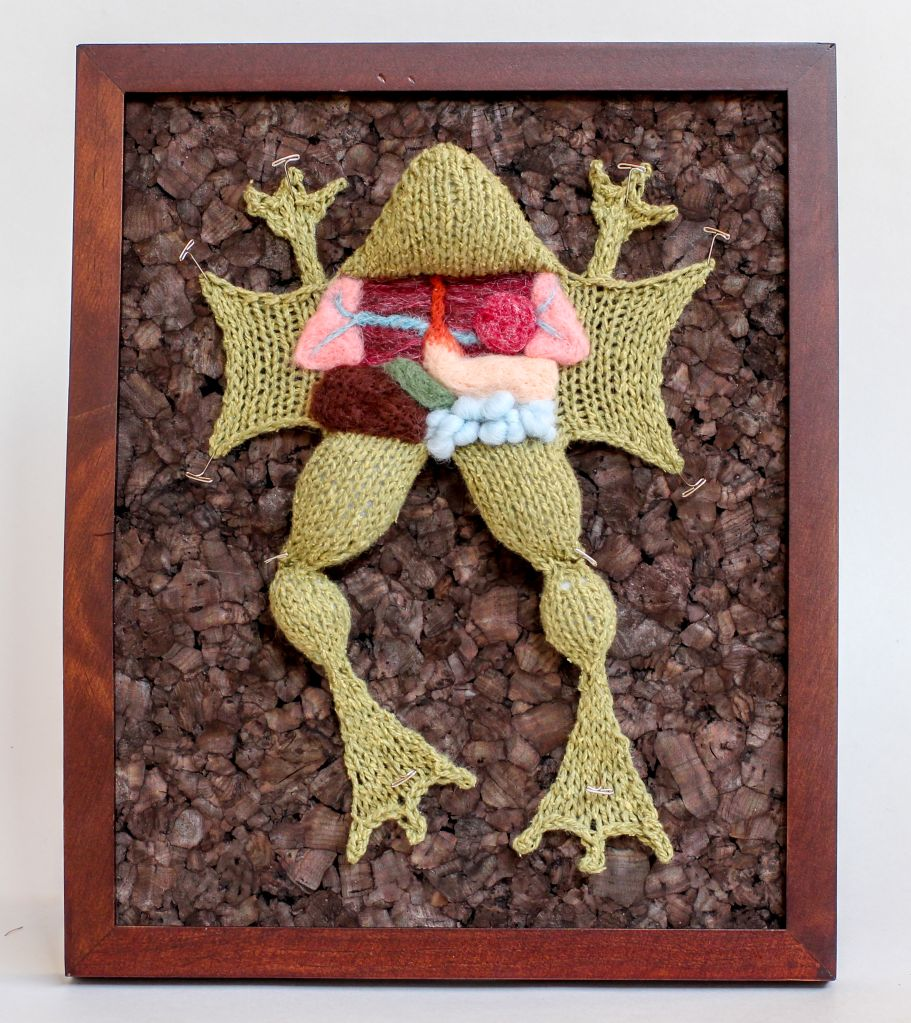 Knit One Dissect One; Woolly Creations are Perfect for Biology... Almost!